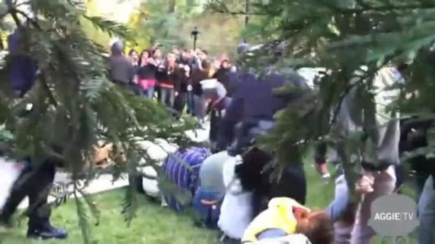 [BAY] UC Davis Police Chief Resigns Following Pepper Spray Report
