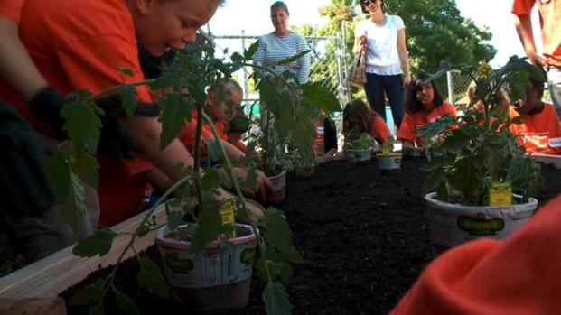 [BAY] YWCA Gardening and Planter Building Project