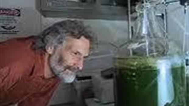 [BAY] Bay Area Group Turns Algae into Fuel