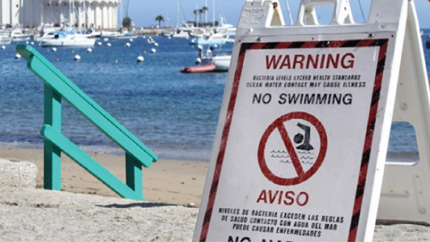 Beach Bummers: Most Polluted Southern California Beaches
