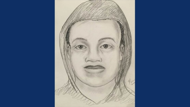 [BAY] Police Release Sketch of Pleasanton Mall Robbery Suspect
