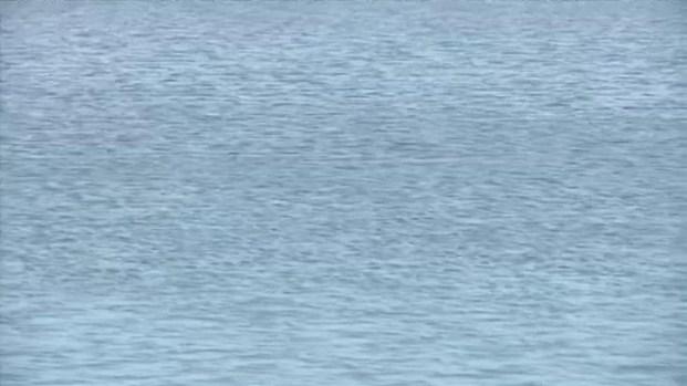 [BAY] Santa Clara Water District Admits Leaked Hydraulic Fluid