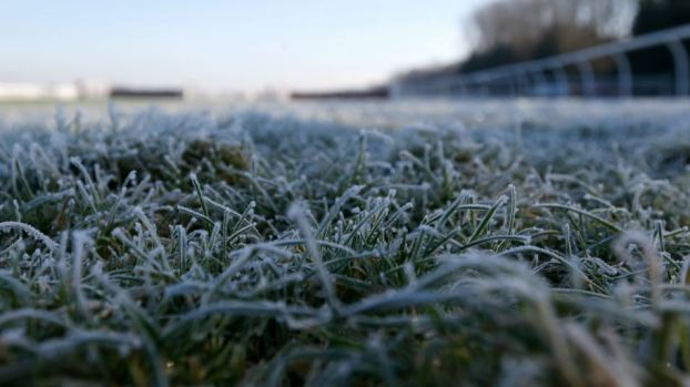 FIRST FREEZE: Warnings issued at temps expected to dip below 32 tonight