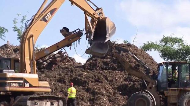 Puerto Rico Turning Maria Debris Into Mulch, Creating Compost