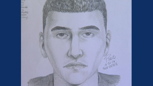 Police Searching for Fake Cop Who Tried to Lure Woman in Car
