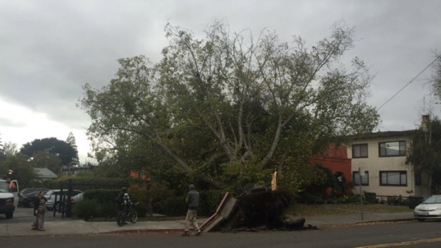 Bay Area Braces for Several Storms