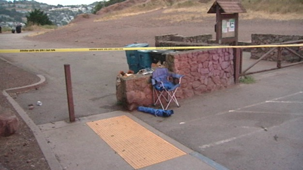 Man Found Stabbed to Death in San Francisco Park, Prompting Homicide Investigation