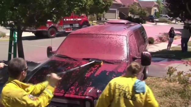 City in Pink: Accidental Fire Retardant Drop Leaves Colorful Mess in North Bay Neighborhood