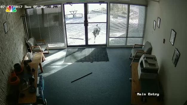 Goat Rams Through Glass Door of Colo. Business