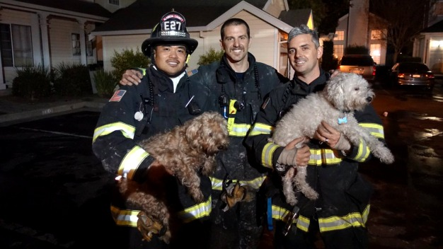Firefighters Save 2 People, 7 Dogs From Burning Newark Home