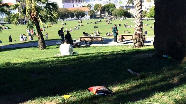 Lawn Landfill at Mission Dolores Park in San Francisco