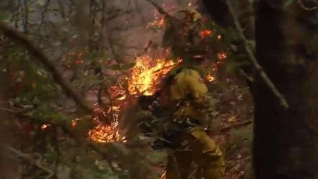 Firefighters Strive to Gain Control of Bear Fire Burning in Santa Cruz Mountains