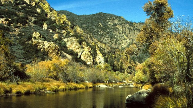 Man Dies Trying to Rescue Boy From River at Sequoia Park
