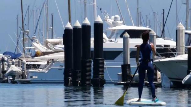 Paddling Through Santa Barbara Harbor