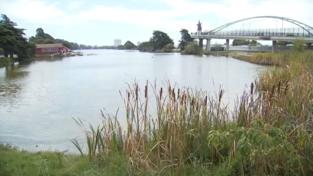 Warnings Issued About Bacteria in Berkeley's Aquatic Park