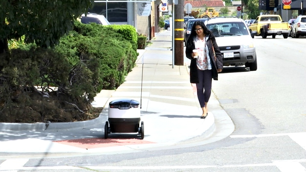 SF Supervisors to Determine Fate of Delivery Robots