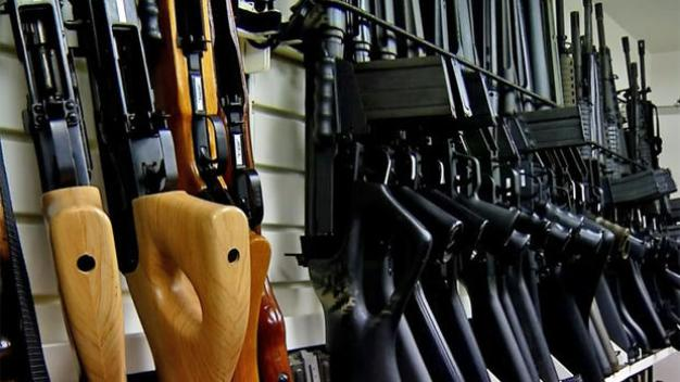 Gun Advocate Expects Effort to Overturn Laws to Fall Short