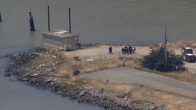 Headless, Limbless Torso Washes Up Near San Francisco Bay Bridge