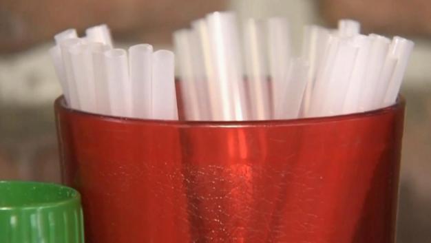 Backlash Builds Against Straw Bans