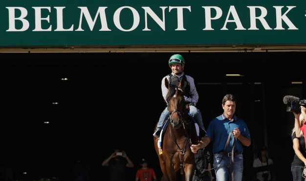 Exaggerator 9-5 Favorite in Belmont Stakes