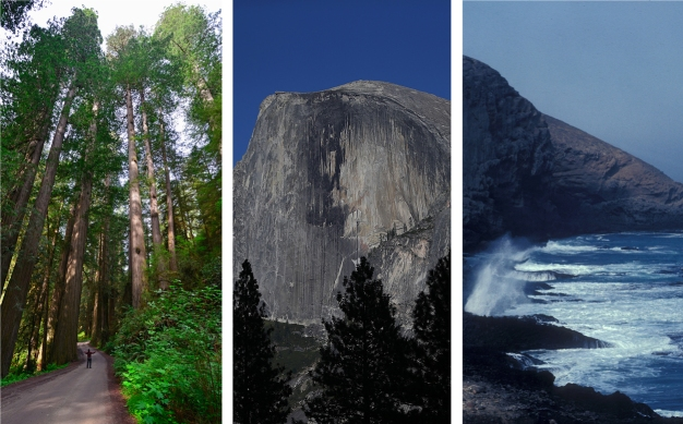National Park Splendor: What You'll See in California