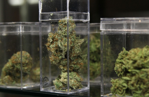 Anticipation High as California Rolls Out Retail Pot Sales