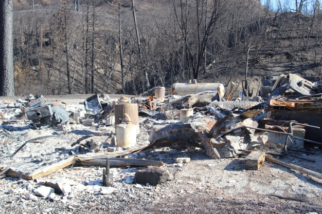 PG&E Negligence Over Pine Tree Started Butte Fire in Sierra: CalFire