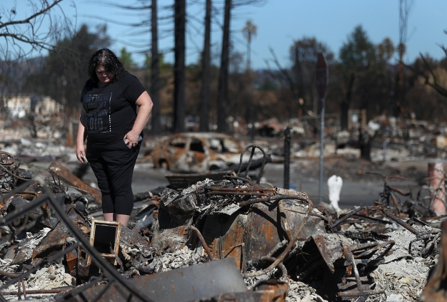 Sonoma County Fell Short During North Bay Firestorm: Report