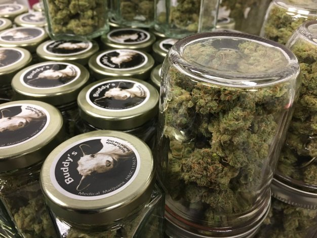 San Jose Shop is Among First in State Licensed to Sell Pot