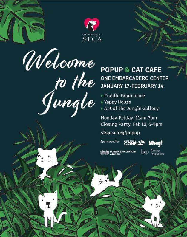 SF SPCA Welcome to the Jungle Pop-Up at Embarcadero