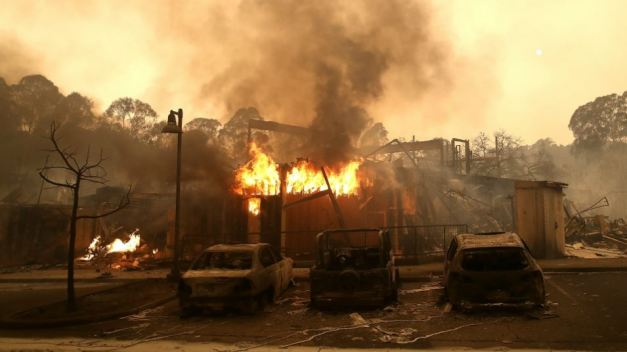 Business on the Mend Eight Months After North Bay Firestorm