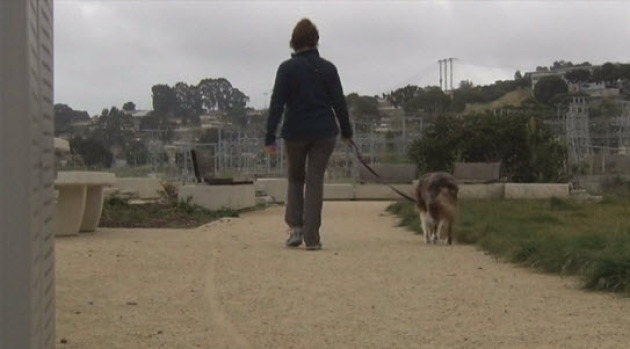 [BAY] California Drought Creates Rat Problem at SF Park