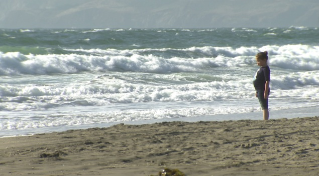 Park Officials to Review Warning Signs on Ocean Beach