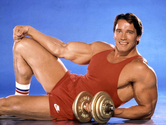 The Governator: Bodybuilder, Actor, Politician