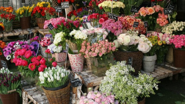 How to Save Money on Valentine's Day Flowers