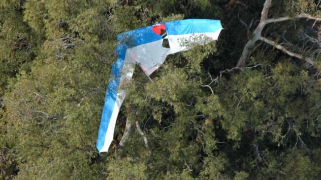 Hang Glider Crashes Into Eucalyptus Tree