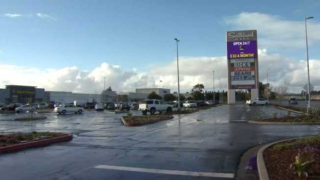 Bat Found at Hayward's Southland Mall Tests Positive for Rabies