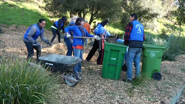 Volunteers Remove Weeds, Spread Mulch to Prevent Fires in Oakland Hills