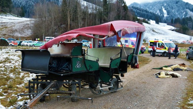 20 Hurt When Horse Carriages Crash in Germany on Christmas