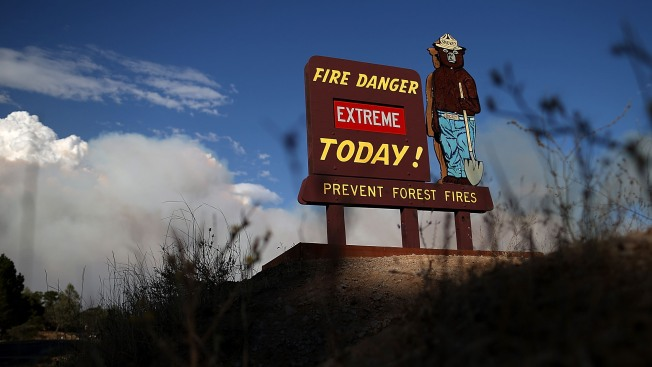 California Environmentalists Decry Rim Wildfire Logging Plan