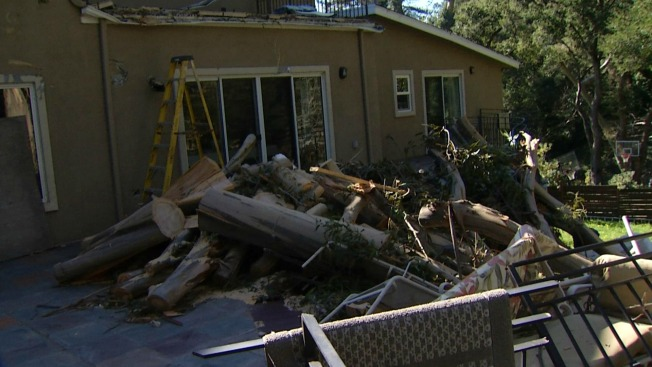 'Scariest Thing I've Ever Felt': Massive Tree Smashes into Castro Valley Home, Elderly Care Facility