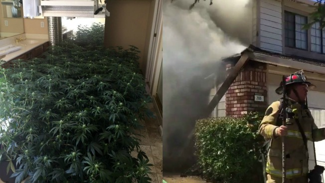 Crews Battle Fire at Marijuana Grow House in Antioch