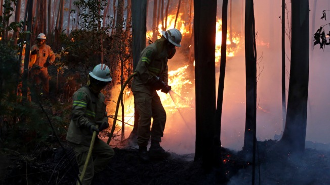 Huge forest fires in Portugal kill at least sixty