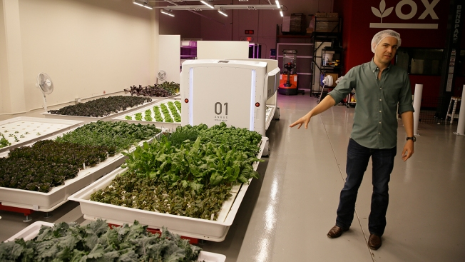 Meet the Farmers of the Future: Robots of San Carlos