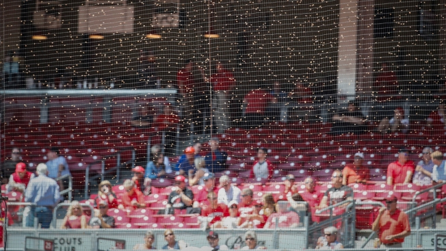 Bee Swarm Delays Start of Giants-Reds Game in Cincinnati