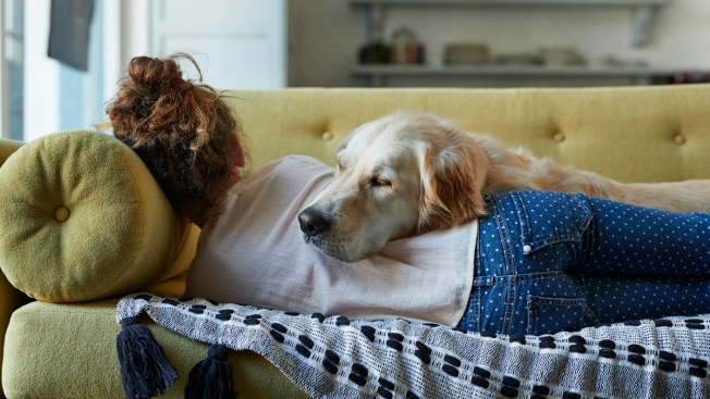 Tired? It's National Napping Day