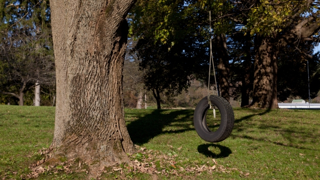 Family: Biracial NH Boy Pushed Off Table With Rope From Tire Swing Around Neck