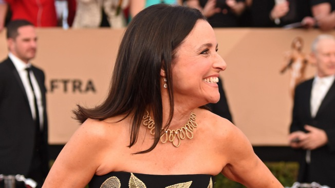 'Beat It': Julia Louis-Dreyfus' Sons Mark Her Last Day of Chemotherapy