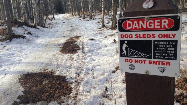 Warmer Weather Shortens Alaska's Iditarod Sled Dog Race