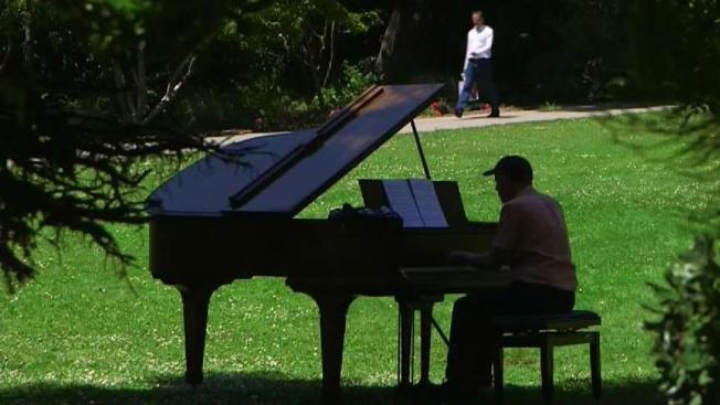 pianos and nature team up in san franciscos botanical gardens - San Francisco Botanical Garden